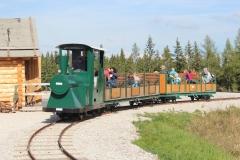 Waldeisenbahn 01